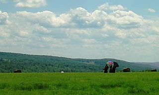 Palyul Retreat -- Monks in Field -- WS