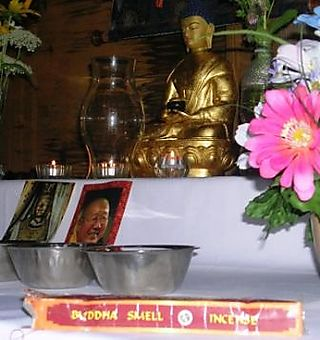 Palyul Retreat -- Buddha Smell -- WS