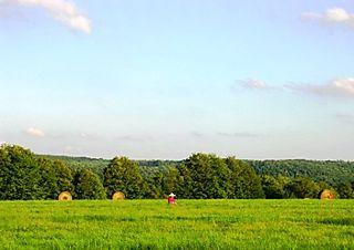 Palyul Retreat -- Meditator in Field -- WS