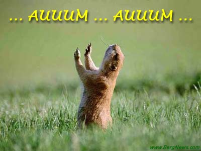 Marmot-aum-gr