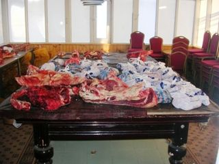Hustai -- Meat on Pool Table -- WS