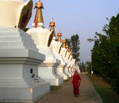 India 2009 -- Namdroling -- 16 Stupas -- WS