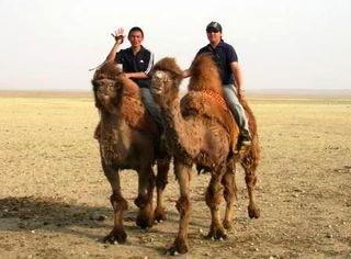 Mongolia -- SIT Gobi Trip -- Minjuur on Camel -- WS