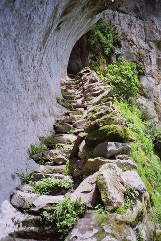 Monk's path