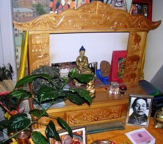 Buddha Bloom -- WS