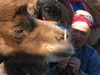 Camel_and_herder