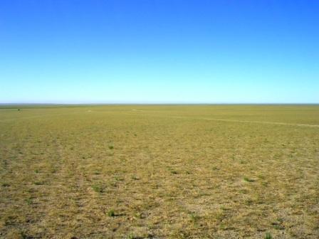 Dornogov_ger_camp_view_with_grass_w